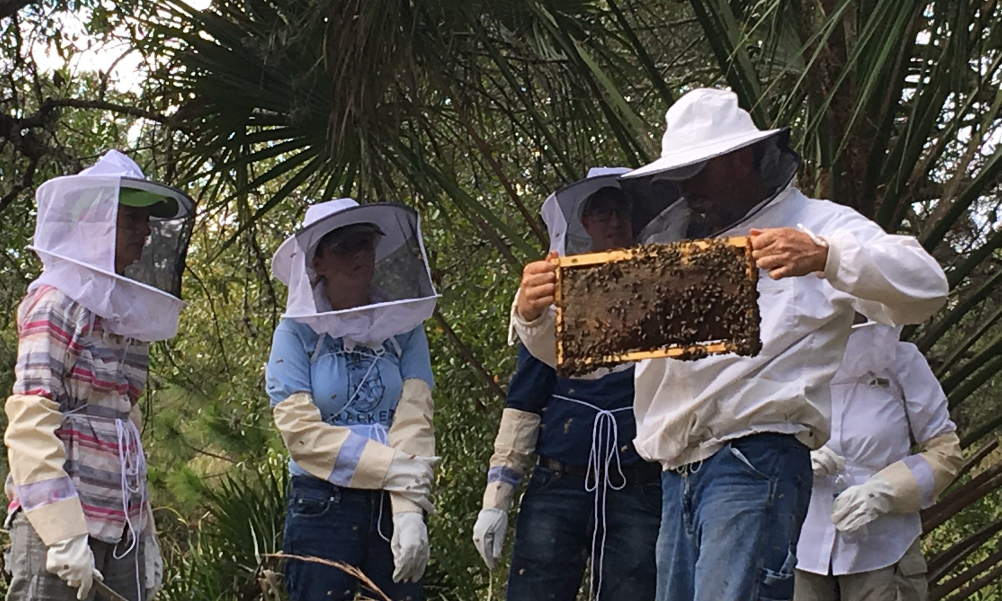 Hive inspections at Bee 101 Hands on Workshop | Lee Honey Bee